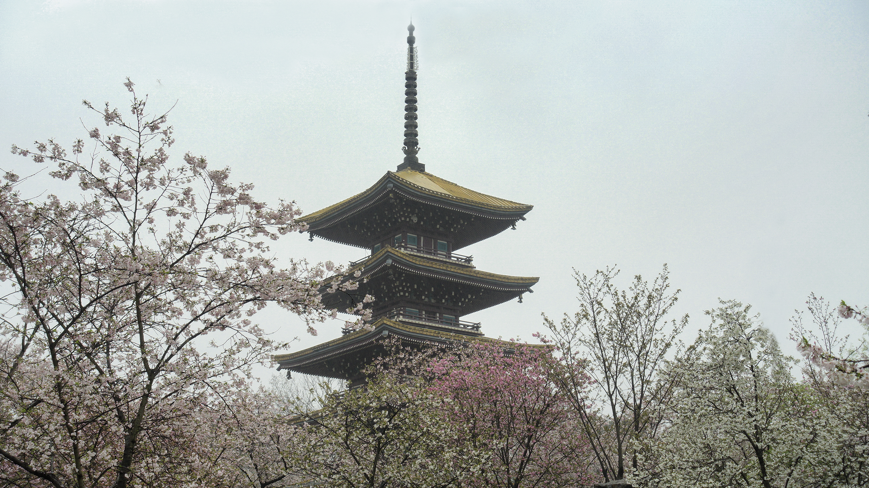 园中最显眼的塔